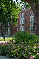 st-josephs_college