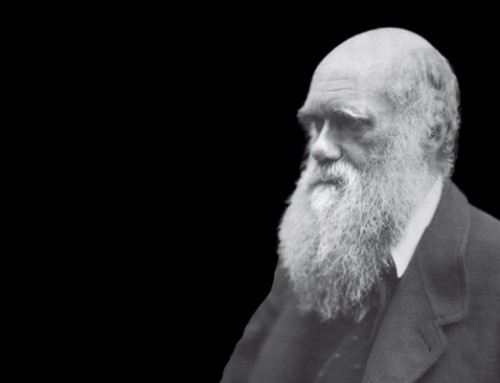 Darwin Day Talk: Does a Tree Have Missing Links?