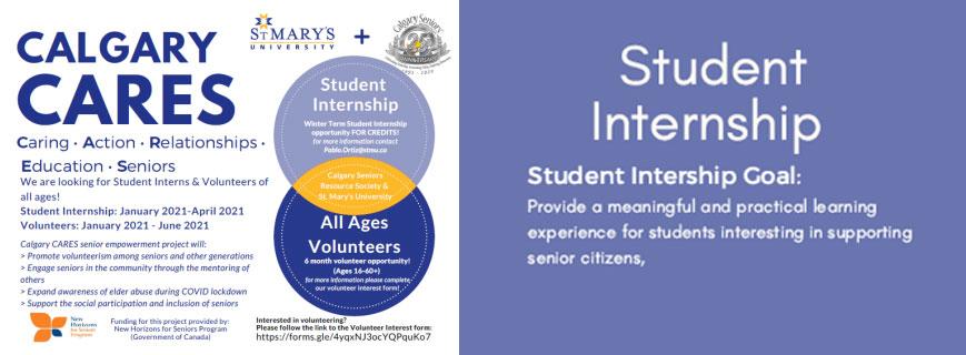 Calgary CARES Internship Opportunity