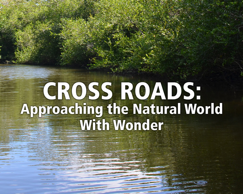 Cross Roads: Approaching the Natural World With Wonder
